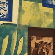 cyanotype photography instructions